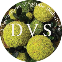 DVS Green Gallery