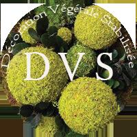 DVS Green Gallery