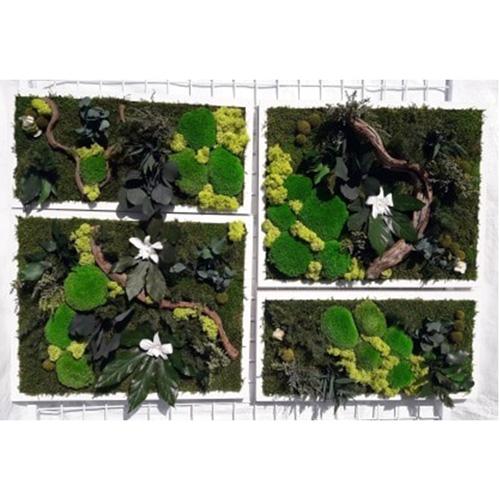 Tableaux vegetal stablilise Jungle dvs green gallery
