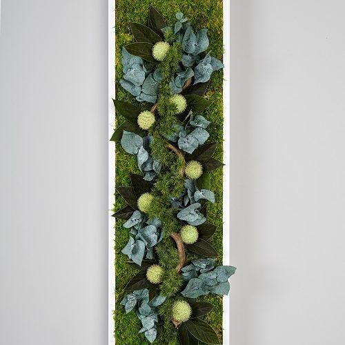 Slim végétal stablisé Dvs green gallery