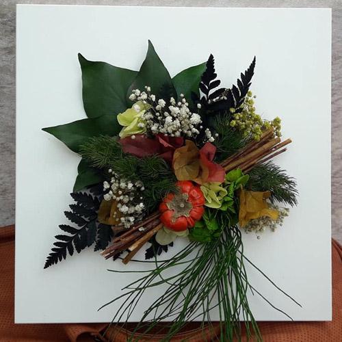 Cadre vegetal stabilise minis citrouilles dvs green gallery