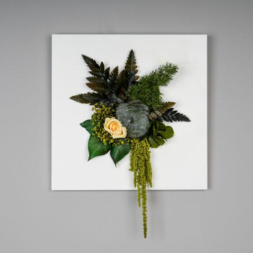 cadre plat végétal stabilisé dvs green gallery