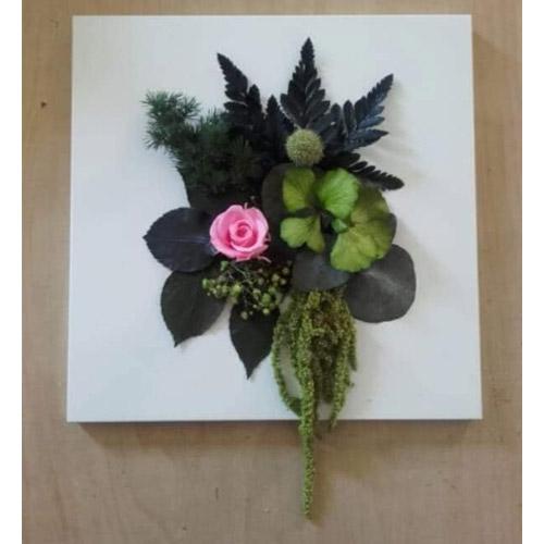 Cadre vegetal stabilise Rose rose dvs green gallery