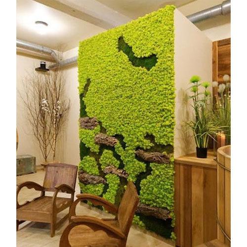 mur vegetal vert citron dvs green gallery