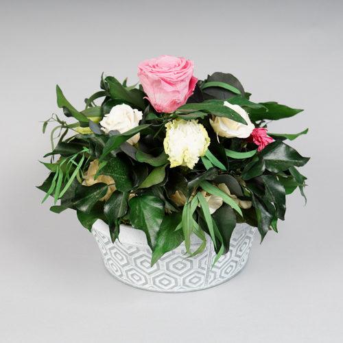 composition en végétal stabilisé grosse rose rose et oeillets blancs Dvs green gallery