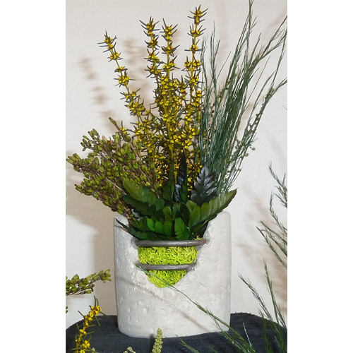 composition vegetale stabilisee beton dvs green gallery