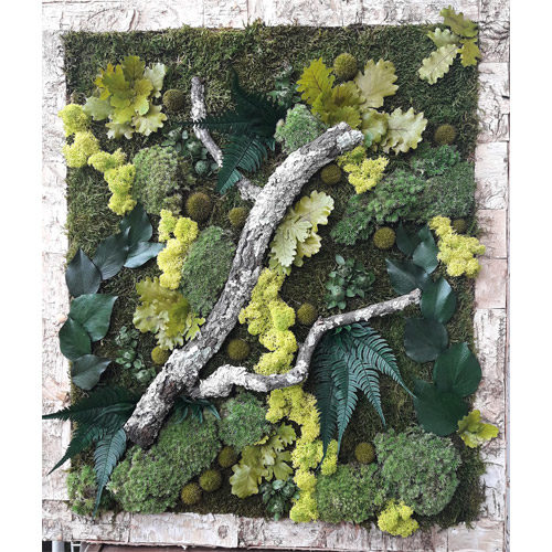 tableau vegetal stabilise forestier dvs green gallery