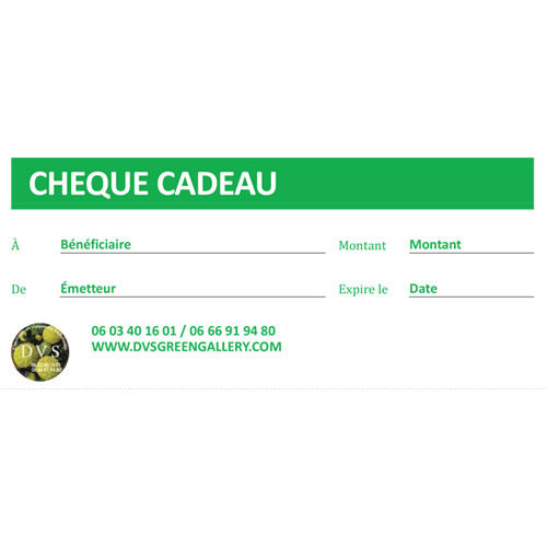 cheque cadeau dvs green gallery
