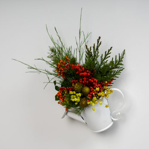 Magnet arrosoir zinc blanc végétal stabilisé dvs green gallery