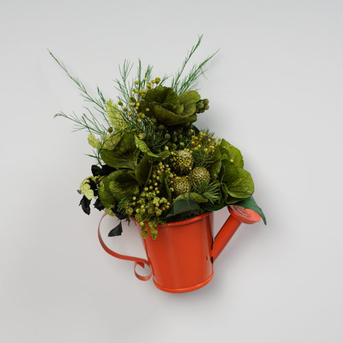 Magnet arrosoir zinc orange végétal stabilisé Dvs green gallery